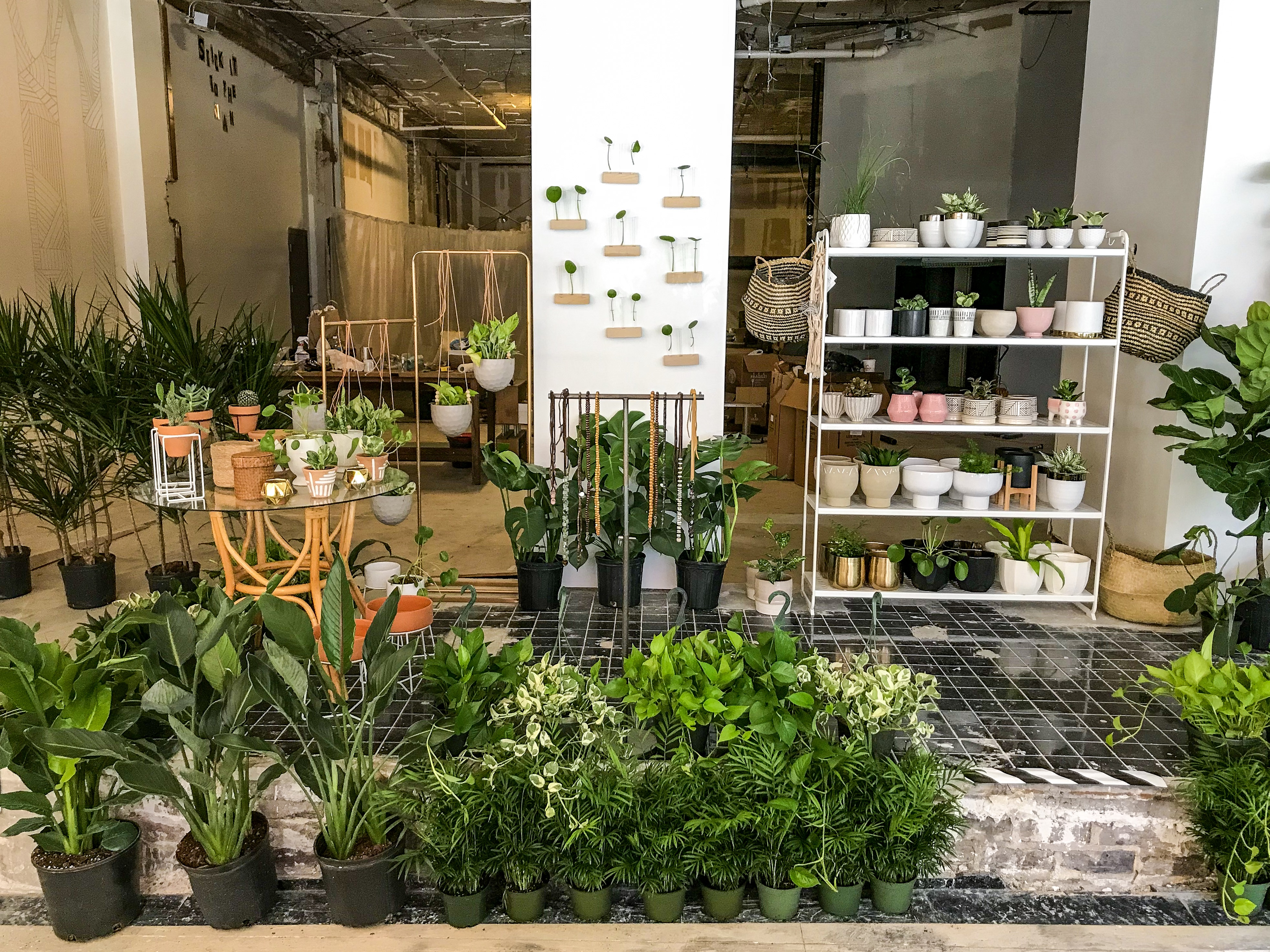 New downtown plant shop, lofts, and electric scooters