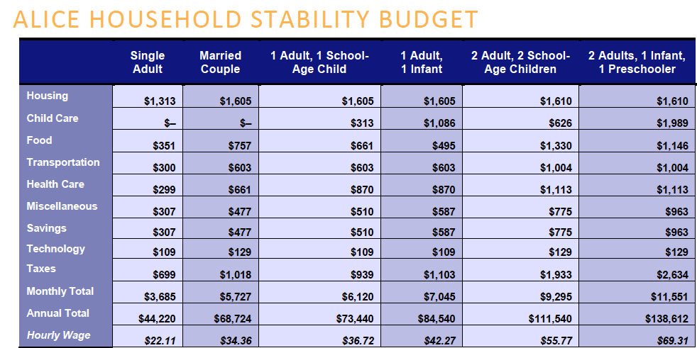 Household Stability Budget