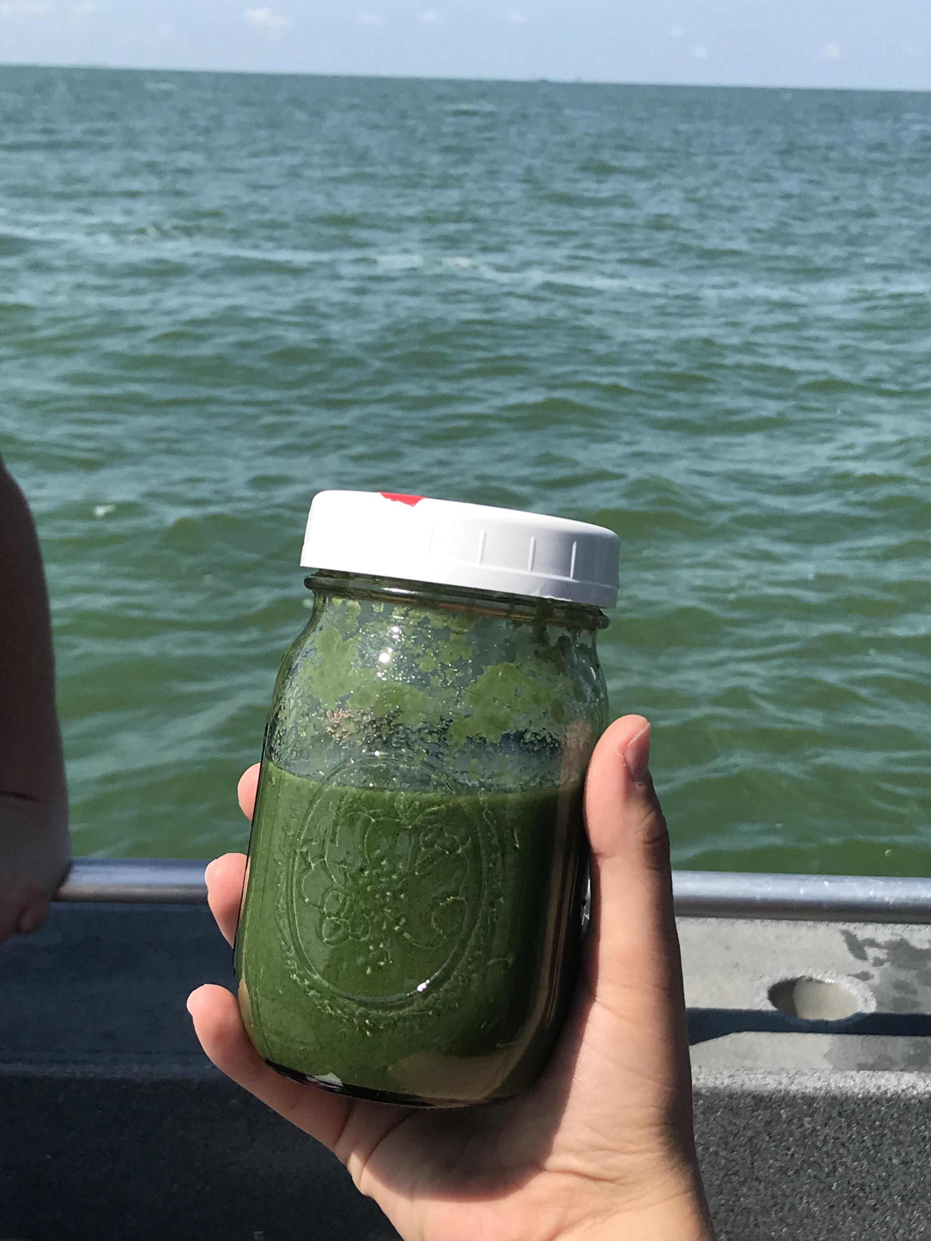 Lake Erie water sample