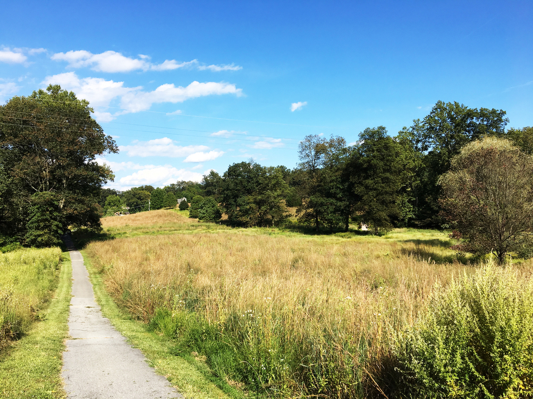 No need to mow all of Big Creek Reservation