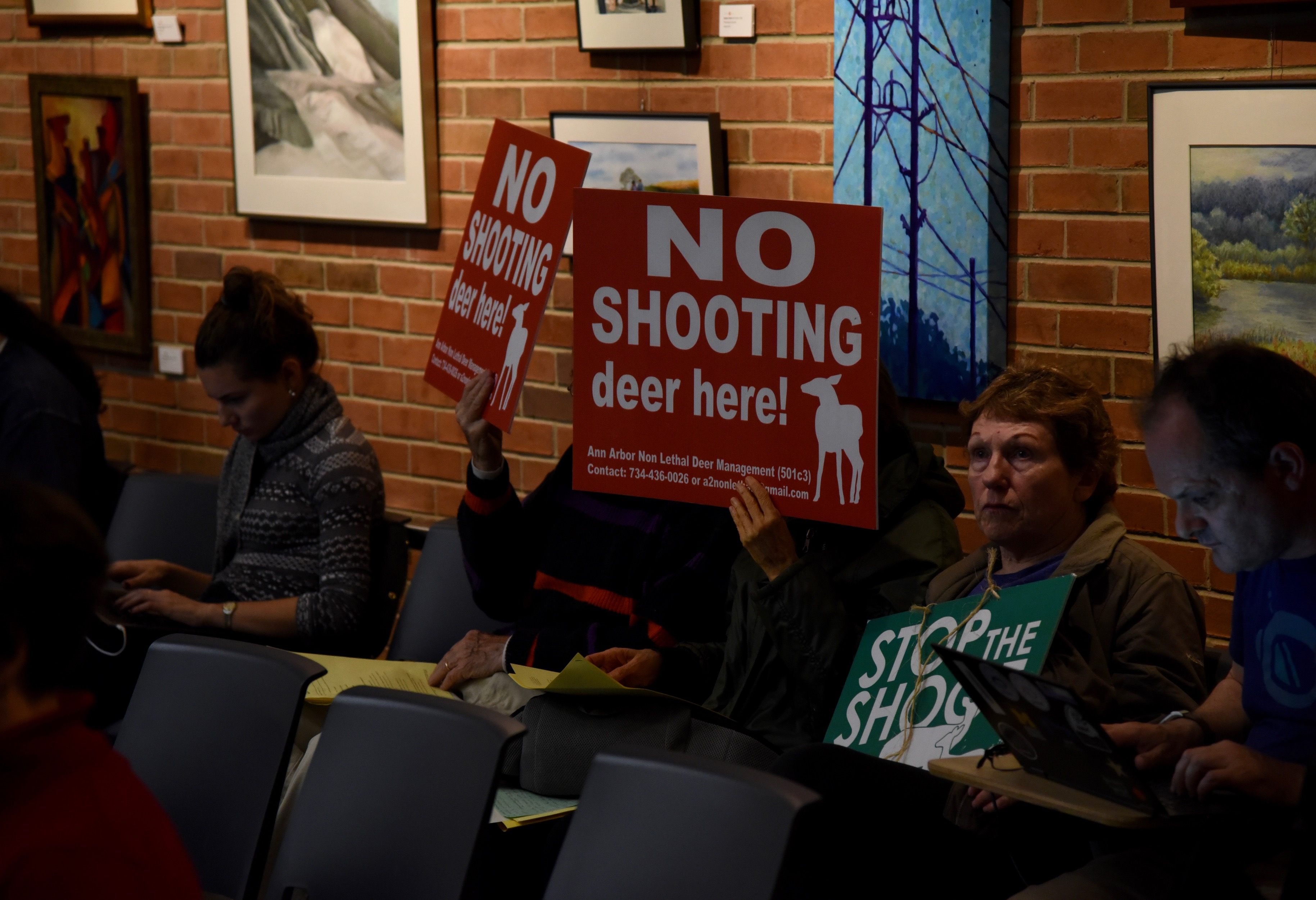 Ann Arbor releases plan to kill up to 150 more deer this winter