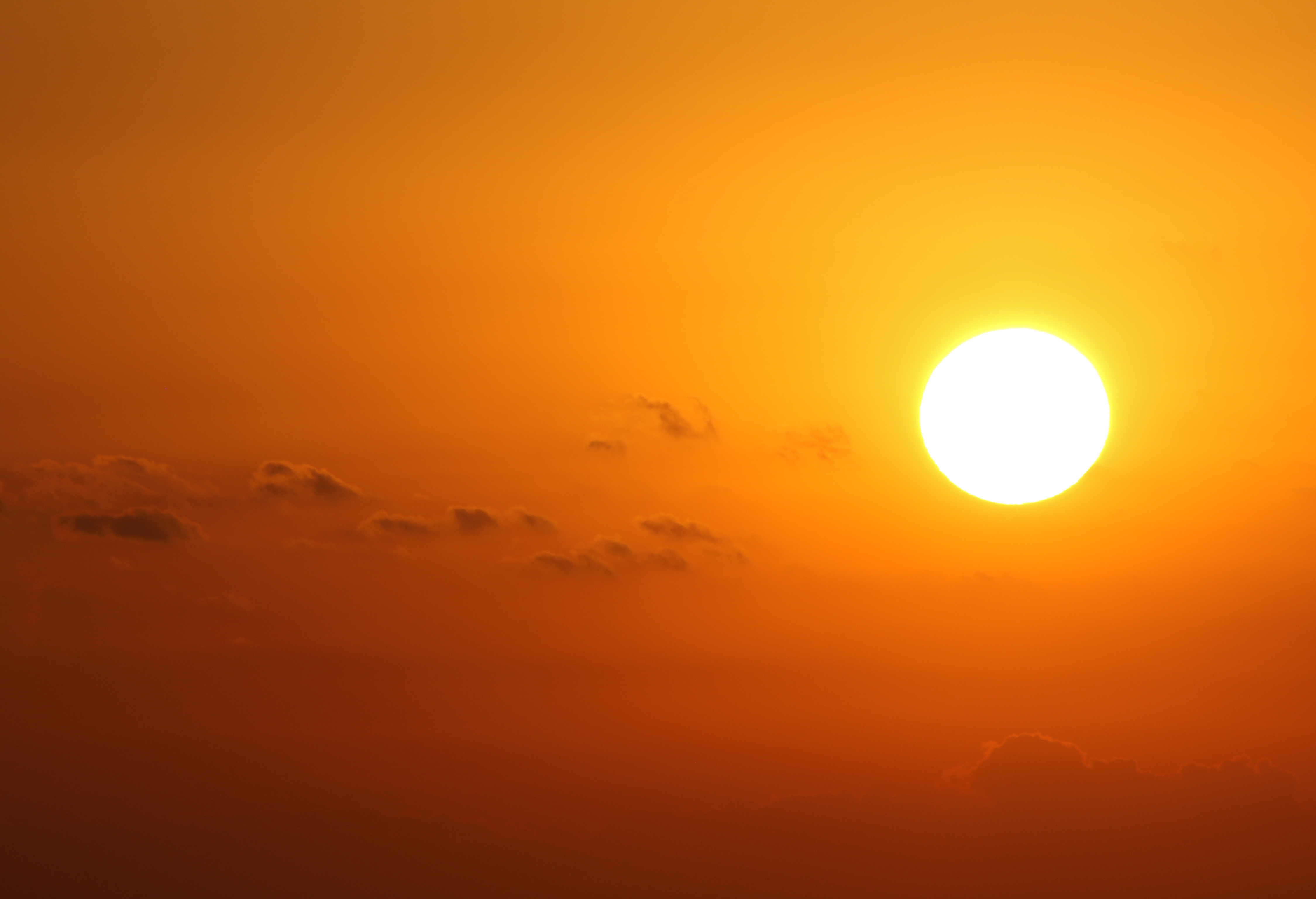 Heat wave bakes central Pa. -- here's info that can save lives