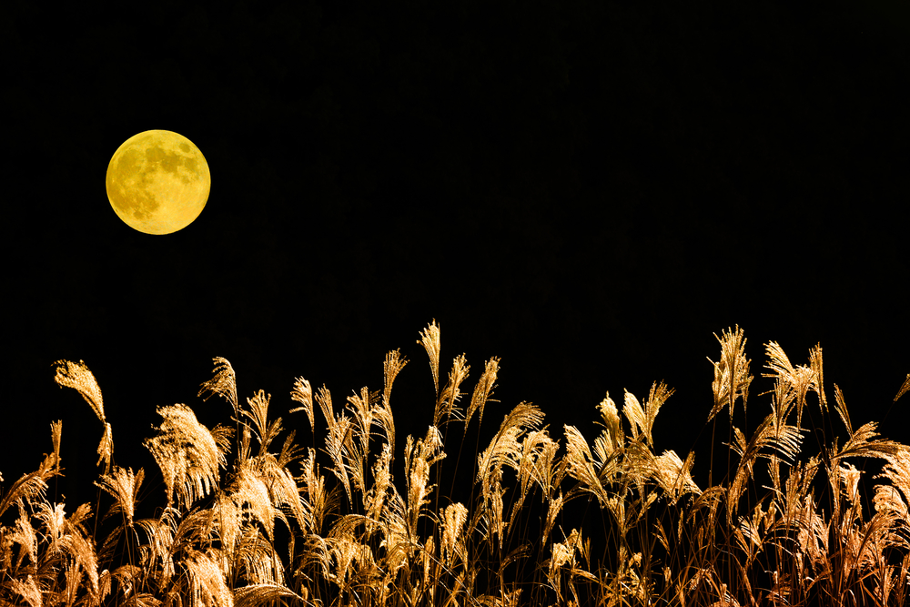 Friday 13th full moon: Tonight's harvest moon is rare and falls on unlucky day