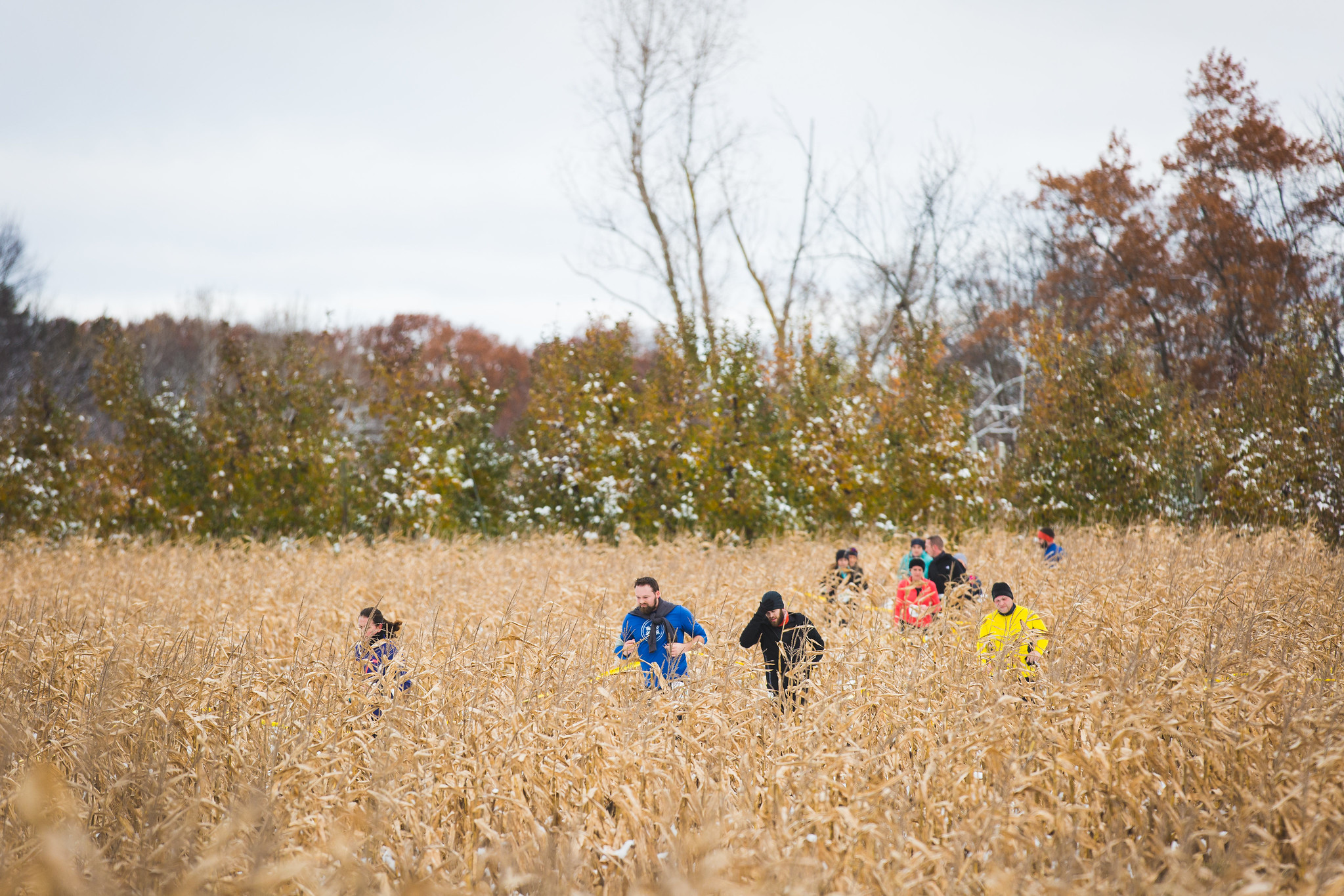 Dirty Duel trail race lets runners choose path through woods, Robinette's corn maze