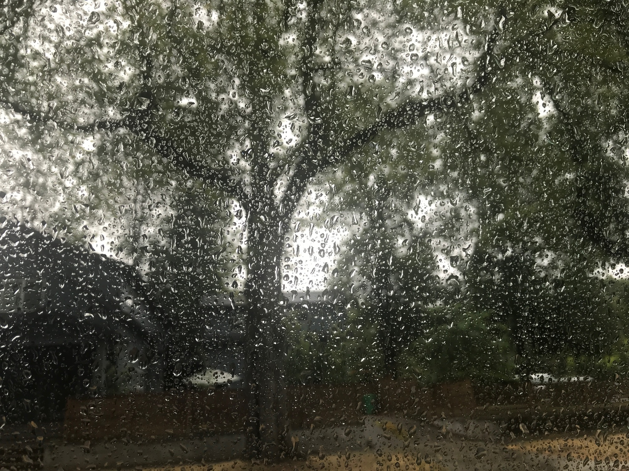 Alabama home to 2 of the rainiest cities in America