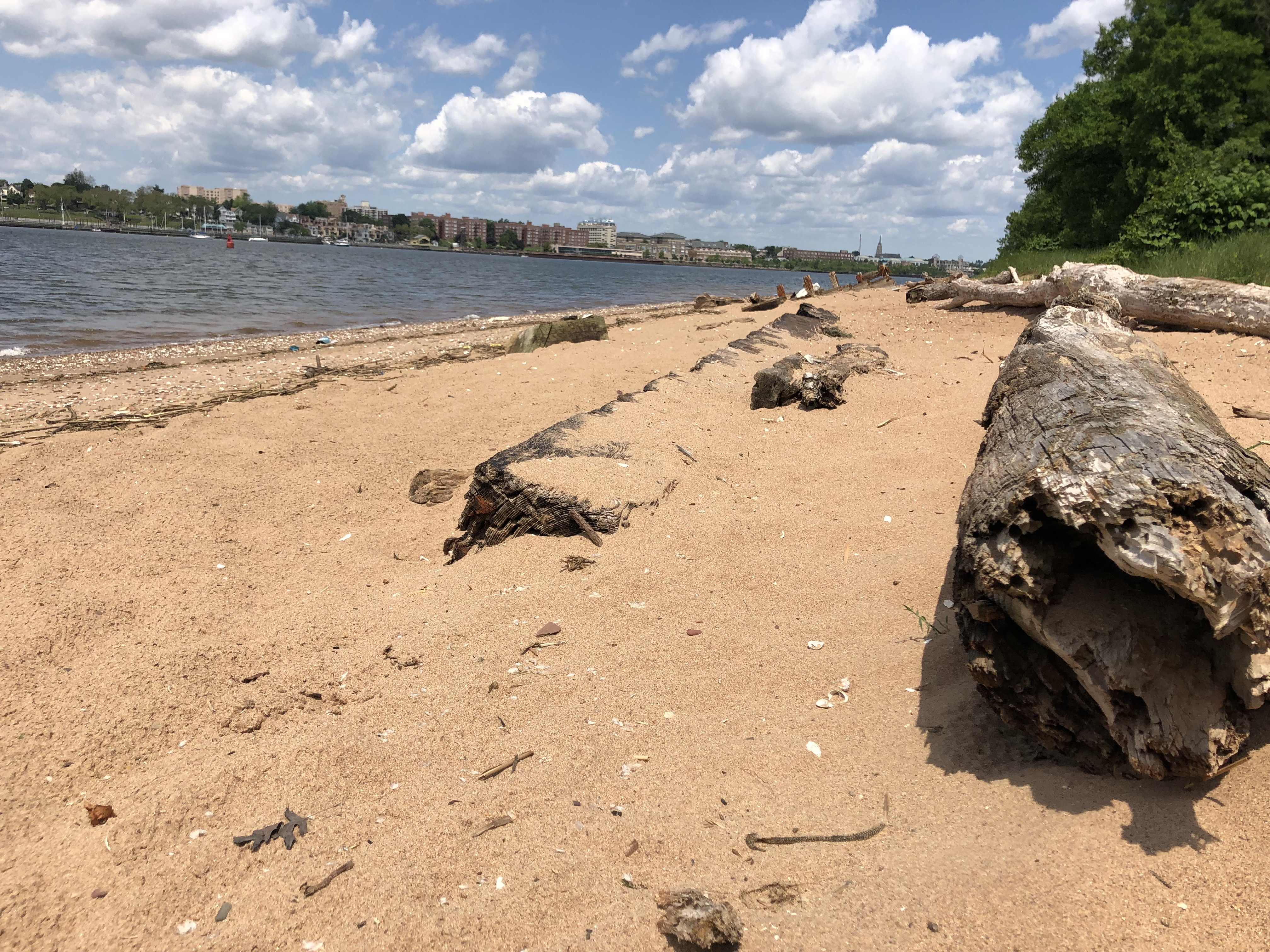 Pols request increased surveillance of S.I. beaches to curb drug use; needles found during cleanup