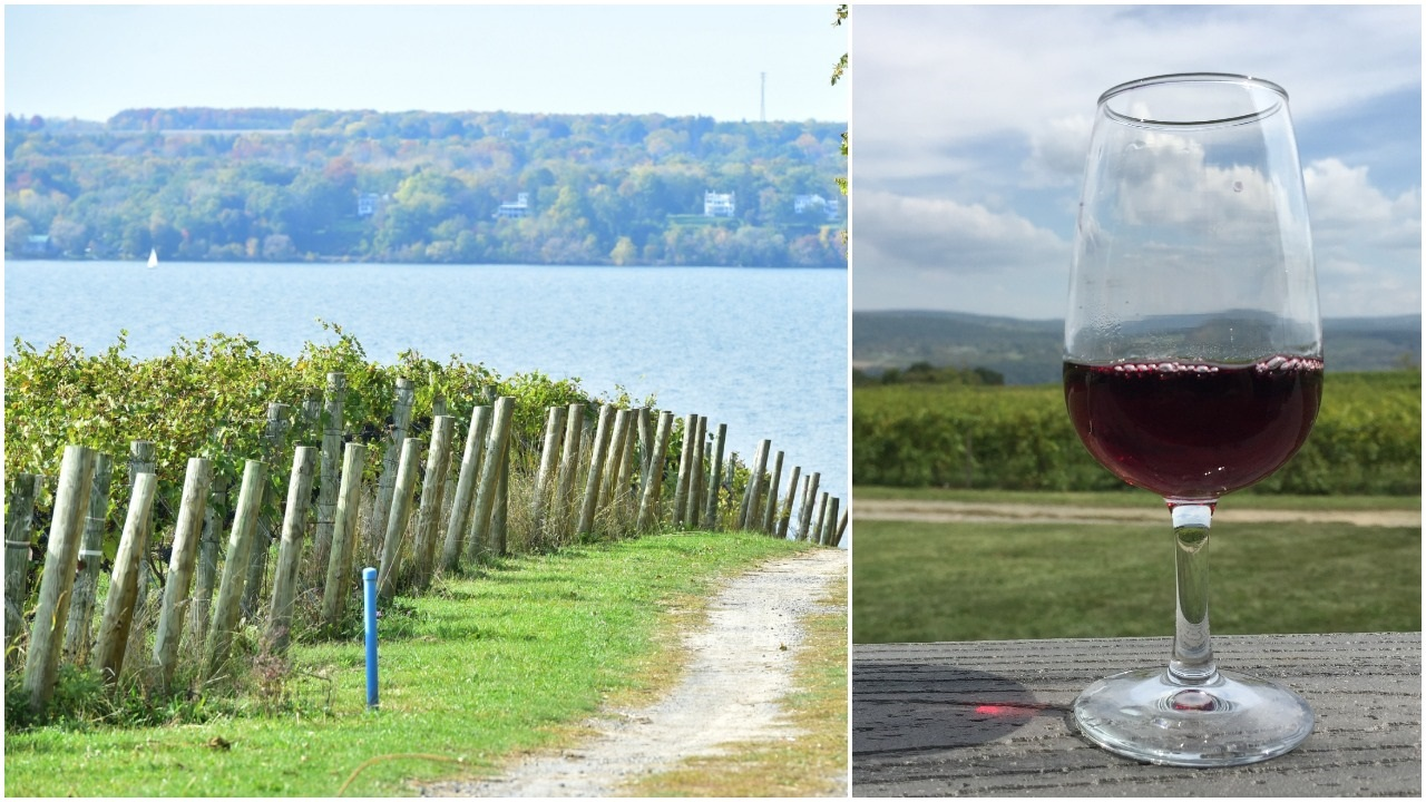 Finger Lakes named America's best wine region in USA Today poll