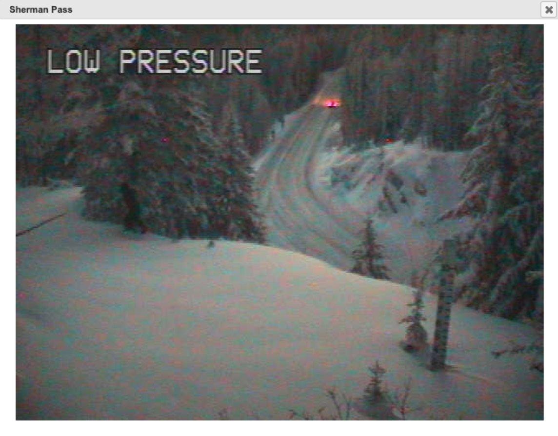 Sasquatch? You decide. Washington state tweets webcam photos