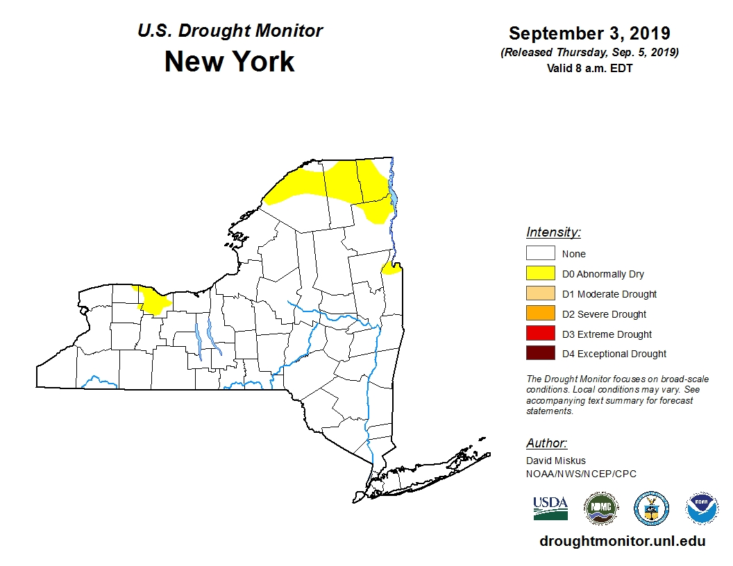 Pre-drought conditions improve in Upstate New York