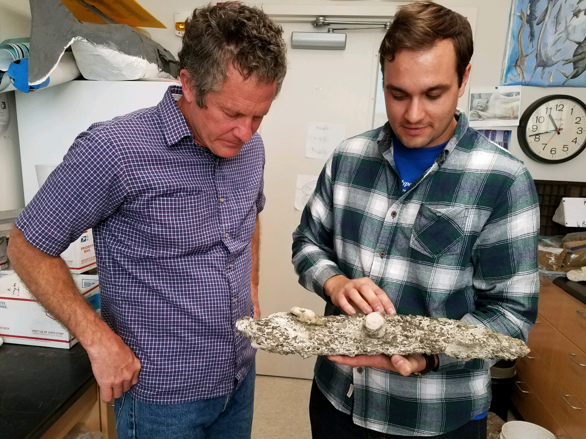 How an unlikely N.J. duo made a 60-million-year-old discovery