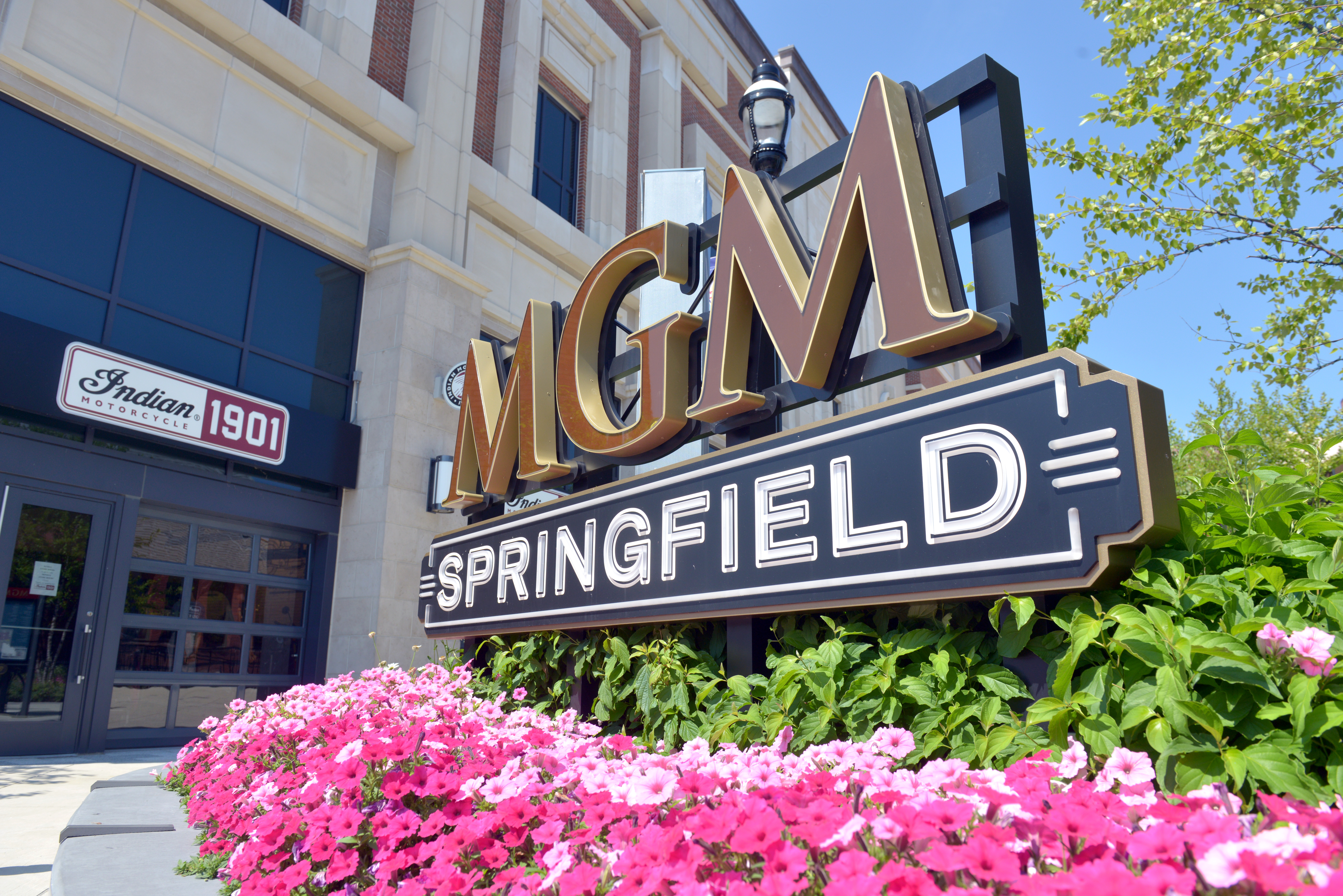 Mgm springfield sports betting the best sports betting app