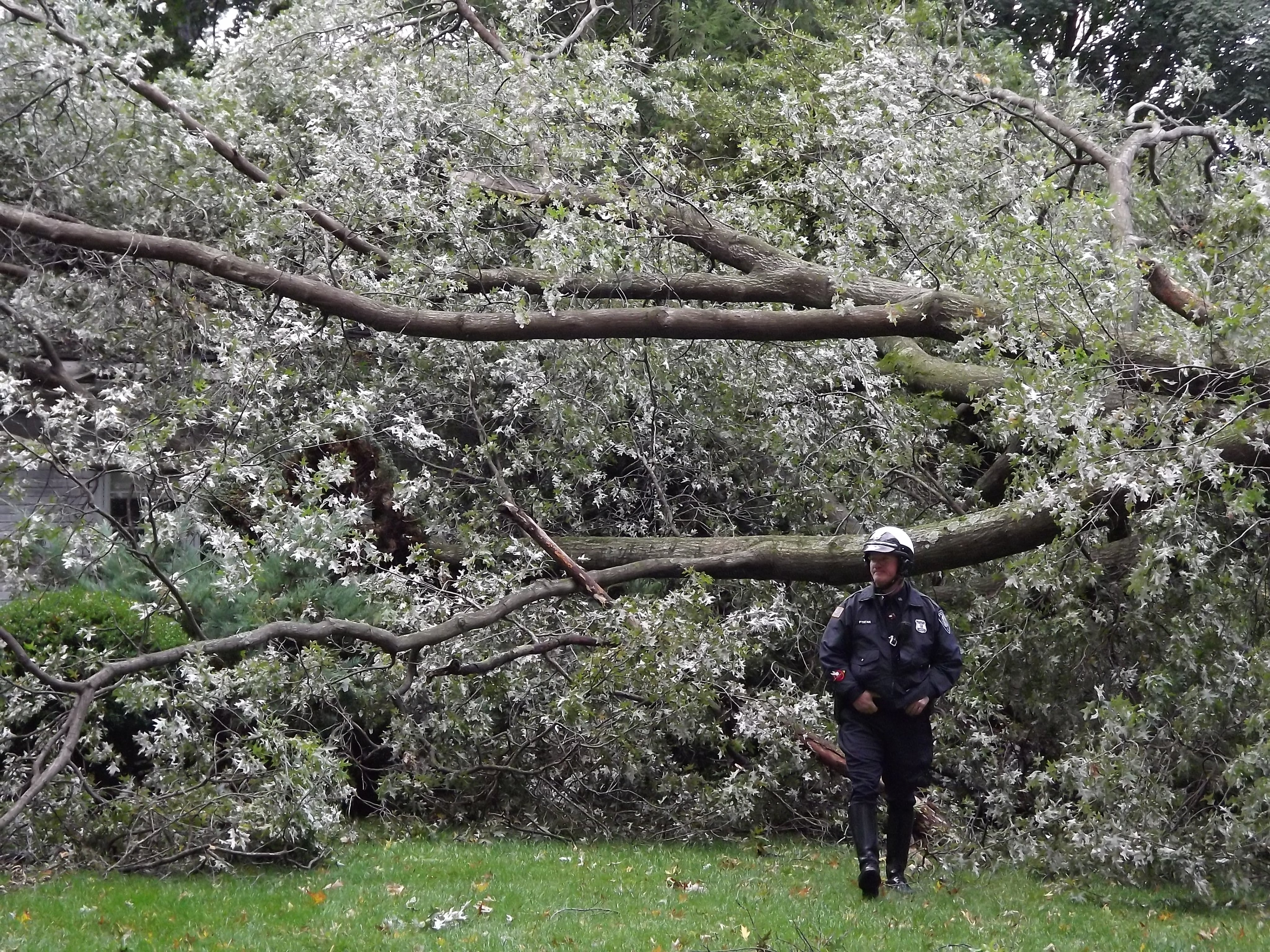 N.J. weather: Here are the strongest gusts from 2nd day of windy storm that blew across state