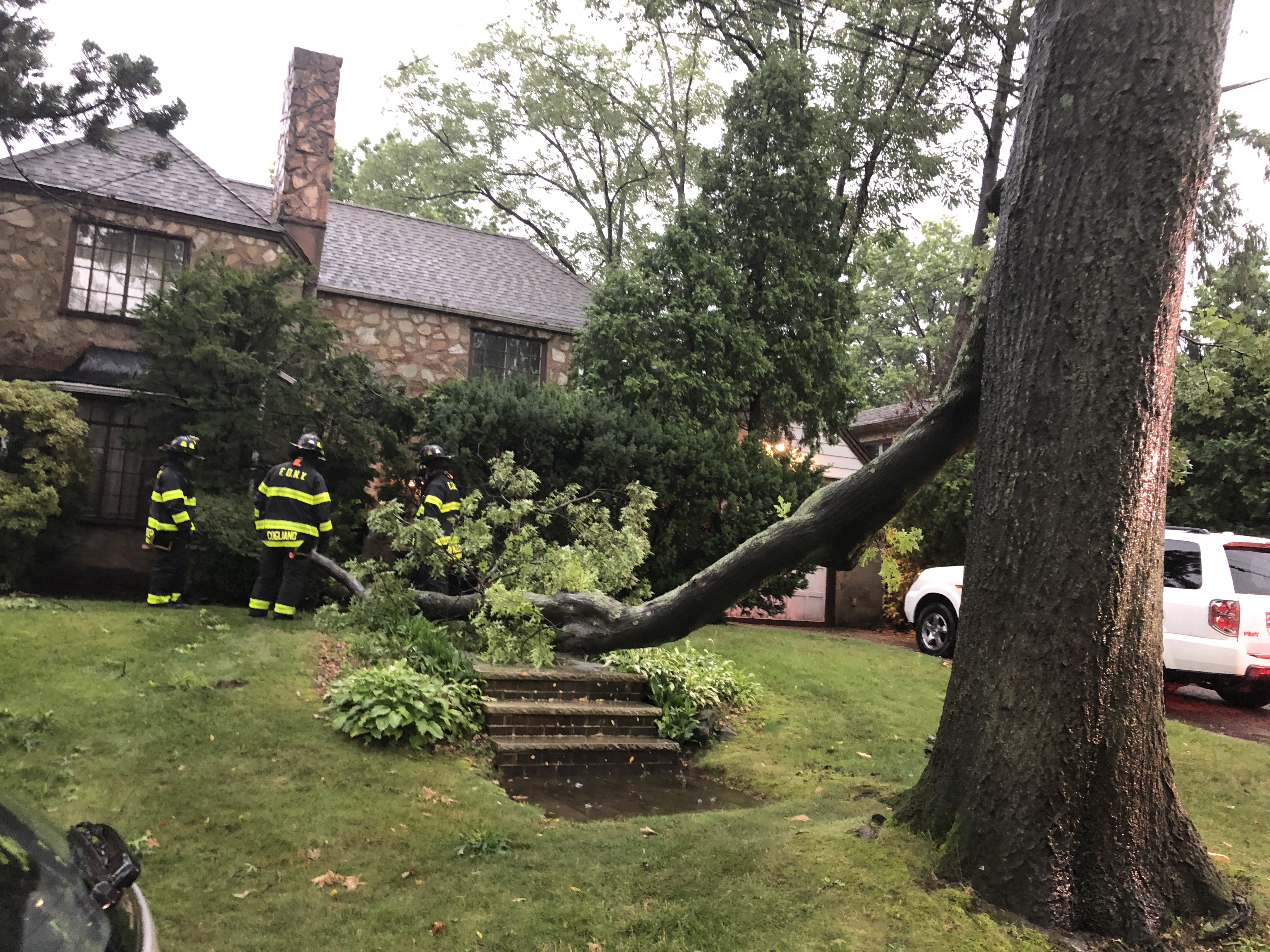 Update: Tree branch hangs low over street; Large tree limb falls onto lawn, hits house